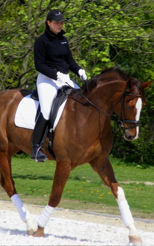 Justyna Ruda : Instruktor jazdy konnej